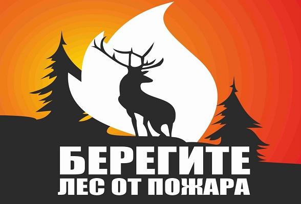 Пожарная опасность в лесах г.о. Серпухов остаётся высокой