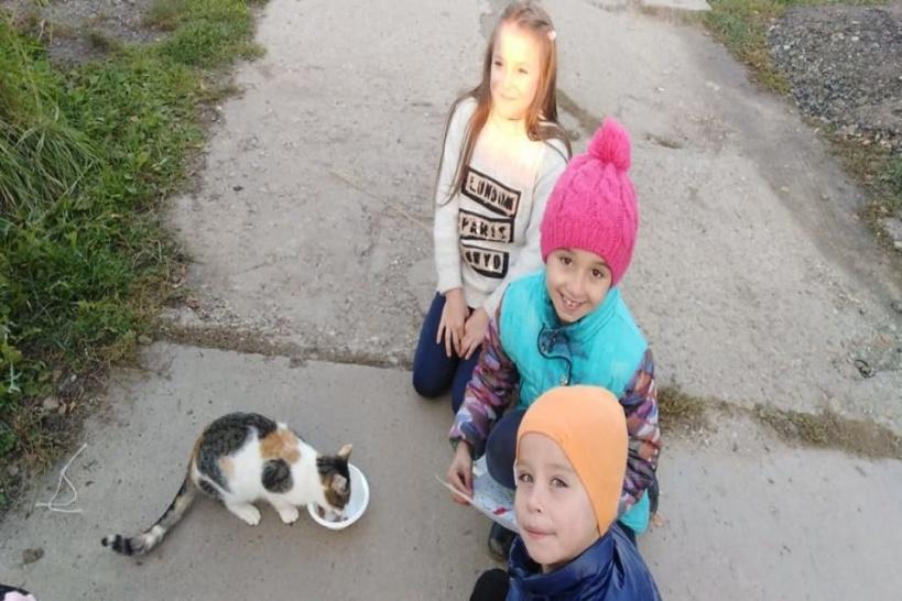 Юные серпуховичи накормили бездомных животных
